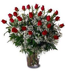 Ulus Ankara anneler günü çiçek yolla  Cam yada mika vazo içerisinde 15 adet kirmizi güller,cipsofi