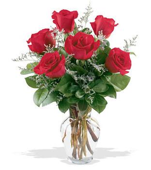 Ulus Ankara yurtiçi ve yurtdışı çiçek siparişi  cam yada mika vazoda 6 adet kirmizi gül