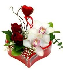 Ulus Ankara kaliteli taze ve ucuz çiçekler  mika kalp içinde 2 gül 1 kandil orkide kalp çubuk