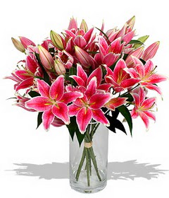 4 dal cazablanca görsel vazosu  Ulus Ankara 14 şubat sevgililer günü çiçek