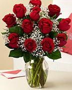 Sevgilime hediye 9 adet 1.ci kalite gül  Ulus Ankara İnternetten çiçek siparişi