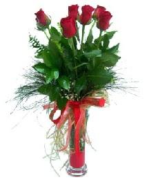 vazo içerisinde 5 kırmızı gül  Ulus Ankara çiçek , çiçekçi , çiçekçilik