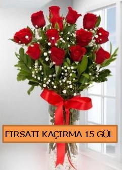 15 İthal kırmızı gül büyük başlı orjinal  Ulus Ankara anneler günü çiçek yolla