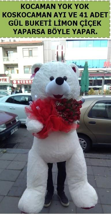Koskocaman beyaz ayı ve 25 adet gül  Ulus Ankara anneler günü çiçek yolla