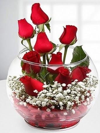 Kırmızı Mutluluk fanusta 9 kırmızı gül  Ulus Ankara anneler günü çiçek yolla