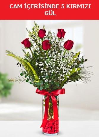 Cam içerisinde 5 adet kırmızı gül  Ulus Ankara anneler günü çiçek yolla