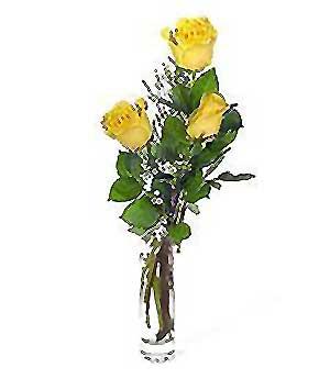 Ulus Ankara çiçek servisi , çiçekçi adresleri  3 adet kalite cam yada mika vazo gül