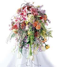 Ulus Ankara çiçek , çiçekçi , çiçekçilik  ferforje mevsim çiçeklerinden