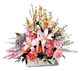 Ulus Ankara anneler günü çiçek yolla  mevsim çiçekleri sepeti özel tanzim