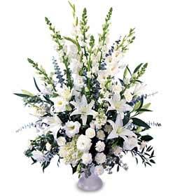 Ulus Ankara kaliteli taze ve ucuz çiçekler  saf temiz sevginin gücü çiçek modeli