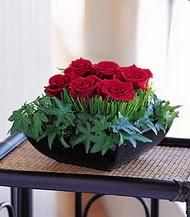 Ulus Ankara anneler günü çiçek yolla  10 adet kare mika yada cam vazoda gül tanzim