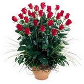 Ulus Ankara online çiçekçi , çiçek siparişi  10 adet kirmizi gül cam yada mika vazo