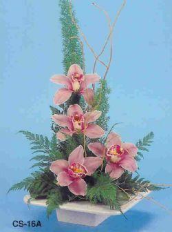 vazoda 4 adet orkide