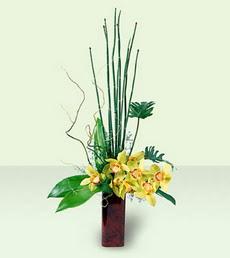 Ulus Ankara anneler günü çiçek yolla   cam yada mika Vazoda dal orkide tanzim