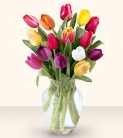 Ulus Ankara çiçek online çiçek siparişi  13 adet cam yada mika vazoda laleler