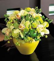 Ulus Ankara hediye sevgilime hediye çiçek  5 adet cam yada mika vazoda orkideler