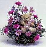 Ulus Ankara çiçek yolla  oyuncak ve mevsim çiçekleri