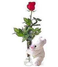 oyuncak ve gül tanzim   Ulus Ankara ucuz çiçek gönder