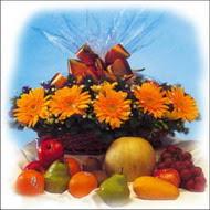 sepette gerbera ve meyvalar   Ulus Ankara 14 şubat sevgililer günü çiçek