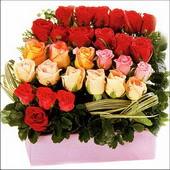 15 adet renkli gül ve cam   Ulus Ankara 14 şubat sevgililer günü çiçek