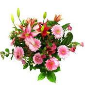 lilyum ve gerbera çiçekleri - çiçek seçimi -