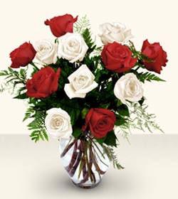 Ulus Ankara online çiçekçi , çiçek siparişi  6 adet kirmizi 6 adet beyaz gül cam içerisinde