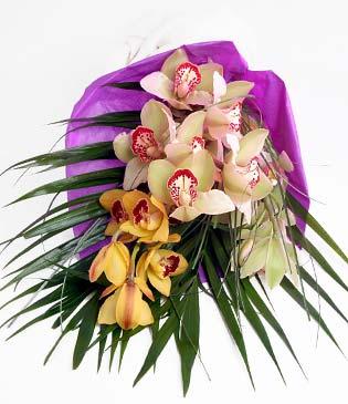 Ulus Ankara yurtiçi ve yurtdışı çiçek siparişi  1 adet dal orkide buket halinde sunulmakta