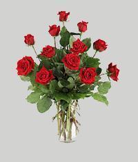 Ulus Ankara yurtiçi ve yurtdışı çiçek siparişi  11 adet kirmizi gül vazo halinde