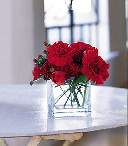 kirmizinin sihri cam içinde görsel sade çiçekler