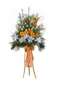 Ulus Ankara çiçekçi telefonları  Kazablanka, gerbera ve güllerle hazirlanmis ferfor