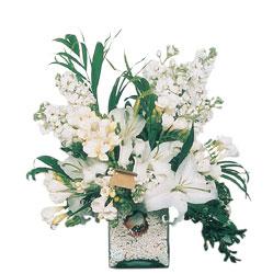 Ulus Ankara çiçek servisi , çiçekçi adresleri  sadece beyazlardan olusmus mevsim cam yada mika tanzim