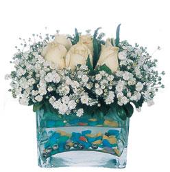 Ulus Ankara 14 şubat sevgililer günü çiçek  mika yada cam içerisinde 7 adet beyaz gül
