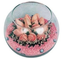 Ulus Ankara hediye sevgilime hediye çiçek  cam fanus içerisinde 10 adet gül