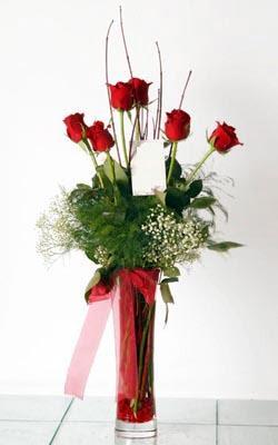 Ulus Ankara yurtiçi ve yurtdışı çiçek siparişi  6 adet kirmizi gül ve cam yada mika vazo