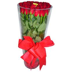 Ulus Ankara çiçek yolla  12 adet kirmizi gül cam yada mika vazo tanzim