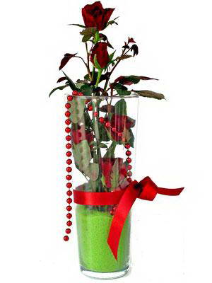 Ulus Ankara kaliteli taze ve ucuz çiçekler  Cam yada mika içerisinde 9 adet kirmizi gül - sevdiklerinize özel