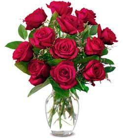 Ulus Ankara kaliteli taze ve ucuz çiçekler  1 düzine kirmizi gül sevenlere özel vazo gülleri