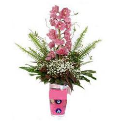 cam yada mika vazo içerisinde tek dal orkide çiçegi