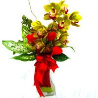 Ulus Ankara online çiçekçi , çiçek siparişi  1 adet dal orkide ve cam yada mika vazo tanzim