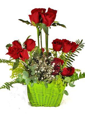 Ulus Ankara yurtiçi ve yurtdışı çiçek siparişi  Çiçek siparisi 9 adet kirmizi gül