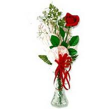 Ulus Ankara 14 şubat sevgililer günü çiçek  1 adet kirmizi gül cam yada mika vazoda