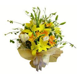 2 dal kazablanka ve kir çiçekleri