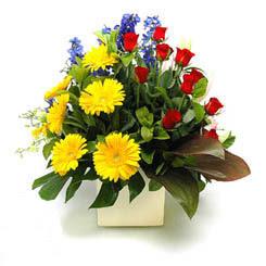 Ulus Ankara kaliteli taze ve ucuz çiçekler  9 adet gül ve kir çiçekleri cam yada mika vazoda