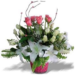 Ulus Ankara yurtiçi ve yurtdışı çiçek siparişi  cam yada mika içerisinde 7 beyaz 6 kirmizi 1 dal kazablanka