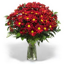 Kir çiçekleri cam yada mika vazo içinde