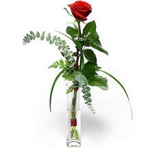 Ulus Ankara çiçek yolla , çiçek gönder , çiçekçi   Sana deger veriyorum bir adet gül cam yada mika vazoda