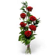 Ulus Ankara online çiçekçi , çiçek siparişi  mika yada cam vazoda 6 adet essiz gül