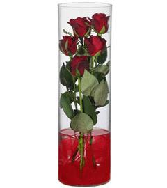 cam içerisinde 7 adet kirmizi gül  Ulus Ankara çiçek online çiçek siparişi