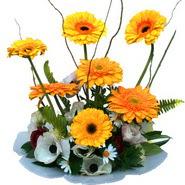 camda gerbera ve mis kokulu kir çiçekleri