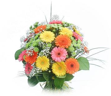 13 adet gerbera çiçegi buketi  Ulus Ankara kaliteli taze ve ucuz çiçekler